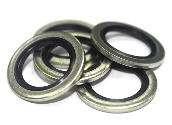 Bonded seals / Usit ringe